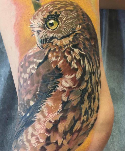Bohemian Tattoo Arts - Realistic Tattoo Morepork